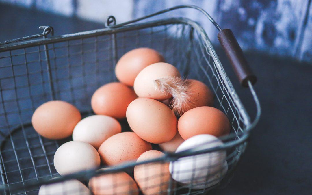 Huevos, importante alimento